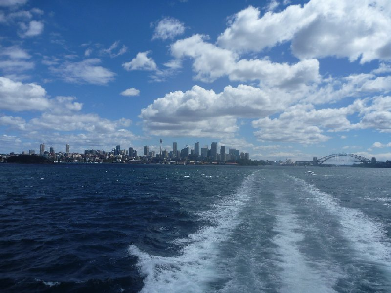 Photo Sydney Whale Watching Tour Australia