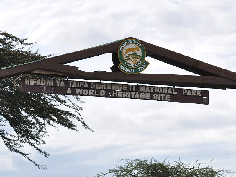 Photo Serengeti NP Tanzania migration safari wanted