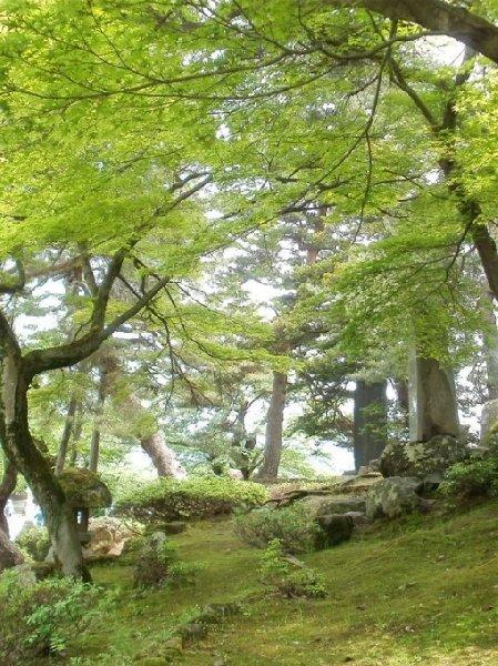 Yonezawa Japan Diary