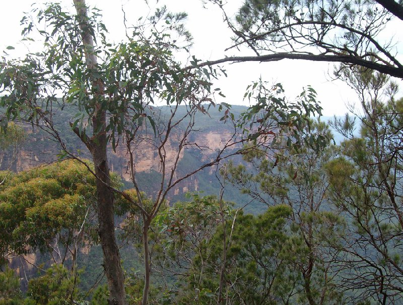 Photo Blue Mountains day tour landscape