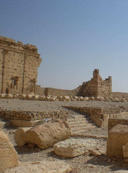 Guided Tour of Ancient Palmyra Syria Holiday Review