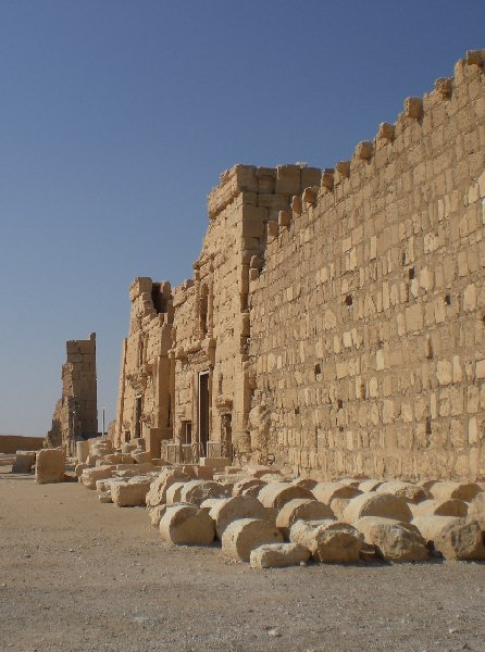 Guided Tour of Ancient Palmyra Syria Diary Tips