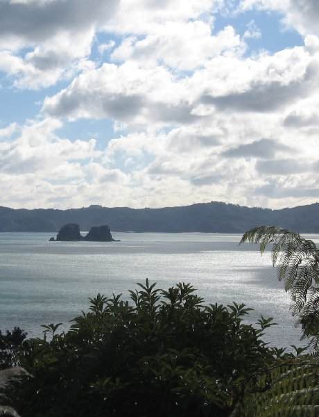 Holiday in Coromandel New Zealand Trip Pictures