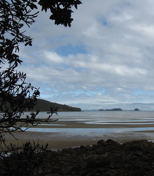 Holiday in Coromandel New Zealand Vacation Picture