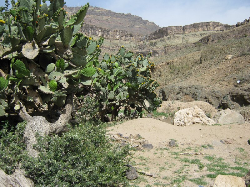 Flight to Sana'a, my vacation in Yemen Sanaa Blog Adventure