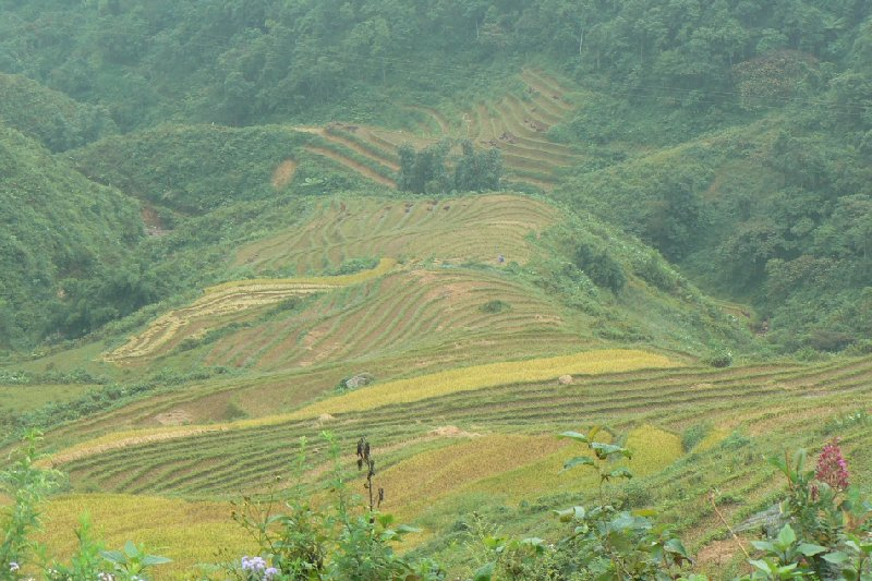 Trekking in Sapa Vietnam Sa Pa Holiday Pictures