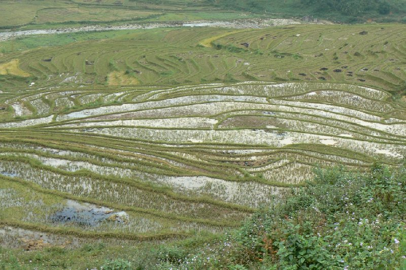 Trekking in Sapa Vietnam Sa Pa Vacation Photos