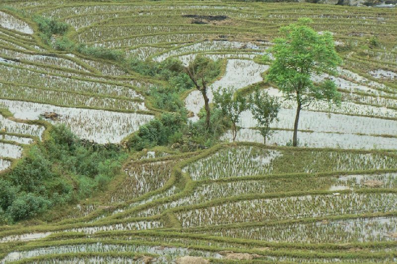 Trekking in Sapa Vietnam Sa Pa Trip