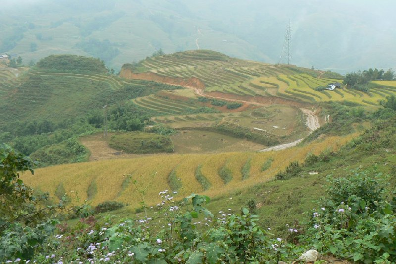 Trekking in Sapa Vietnam Sa Pa Album Photographs