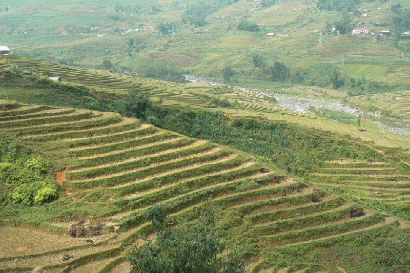 Trekking in Sapa Vietnam Sa Pa Diary Sharing