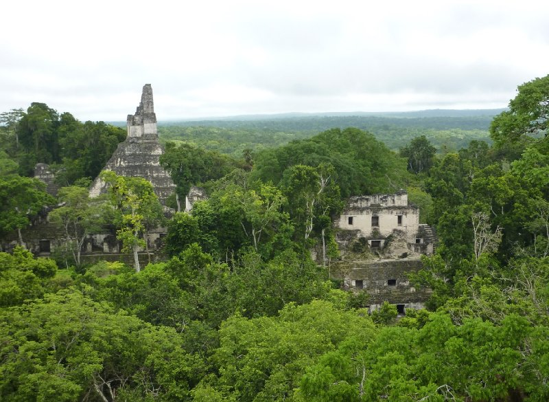 Photo Tikal Tour of the Mayan Ruins, Guatemala raction