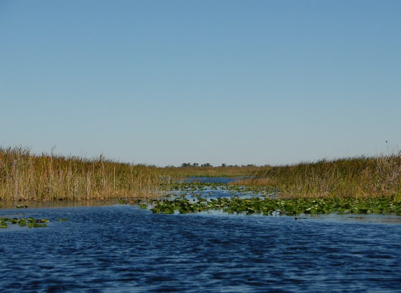 Everglades National Park Boat Tour United States Diary Tips