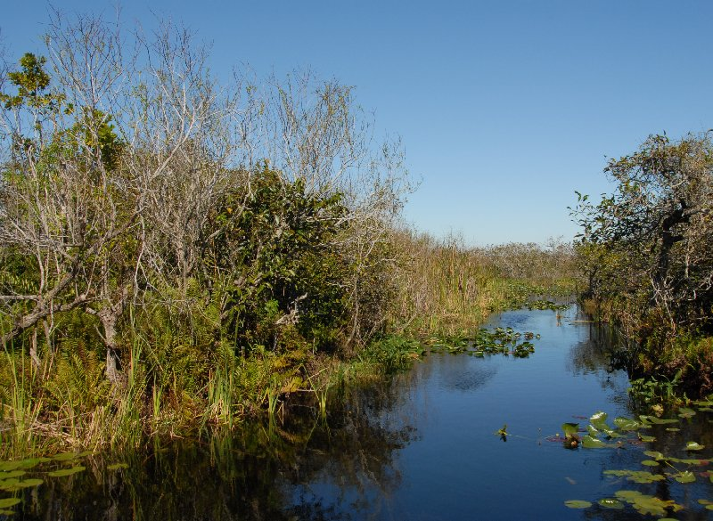 Everglades National Park Boat Tour United States Trip Guide