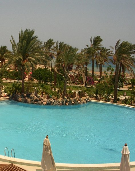 Photo Marsa Alam beach holiday, Egypt snorkelled