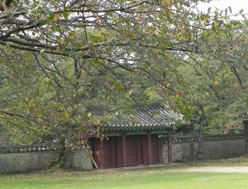 A Few Days Stay in Gyeongju South Korea Gyeongju-si Trip Experience