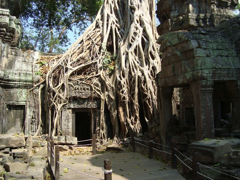 Siem Reap Cambodia Vacation Pictures