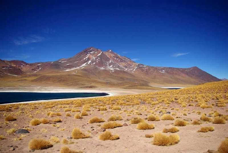 Photo Touring the Atacama Desert Chile definately