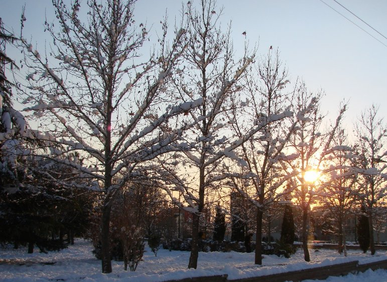 Winter Holiday in Tehran Iran Vacation Photos