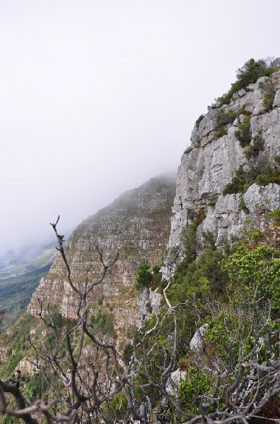 Photo Cape Town Tours South Africa Mountain
