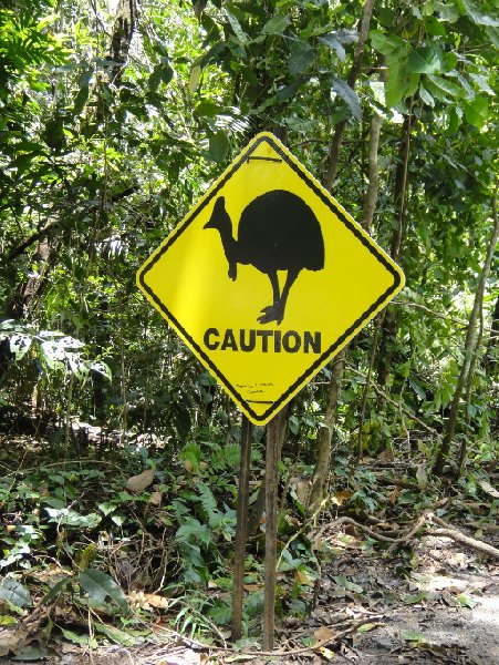 Cape Tribulation Australia