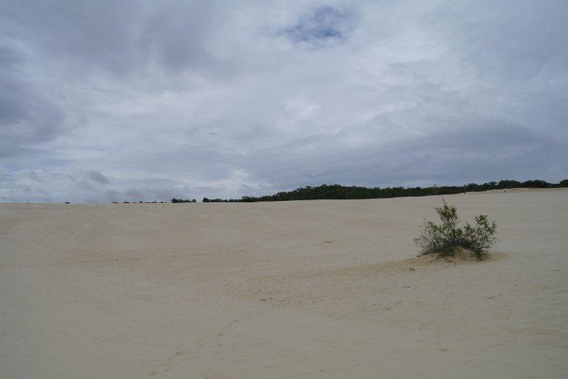 Photo Moreton Island Australia Australia