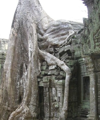 Angkor Cambodia Photo Gallery