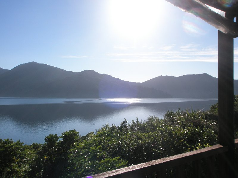 Photo Queen Charlotte Track New Zealand Charlotte