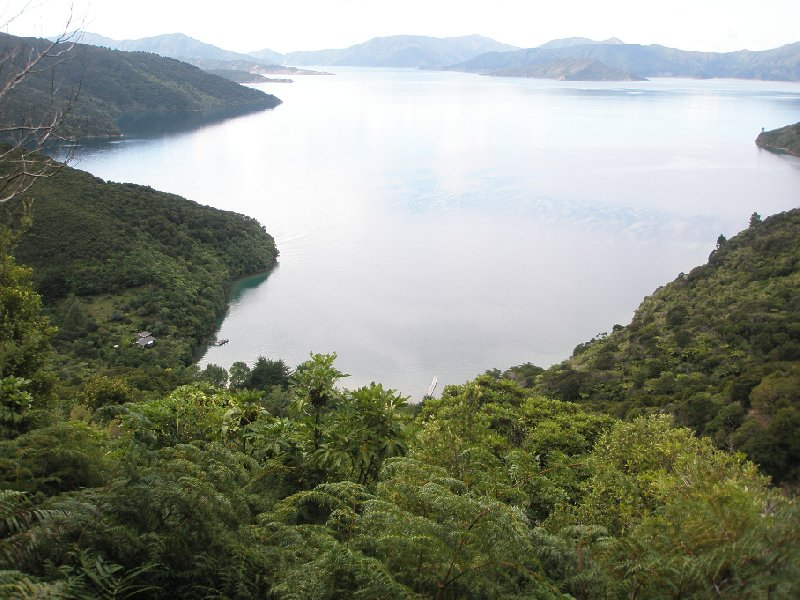 Photo Queen Charlotte Track New Zealand walking