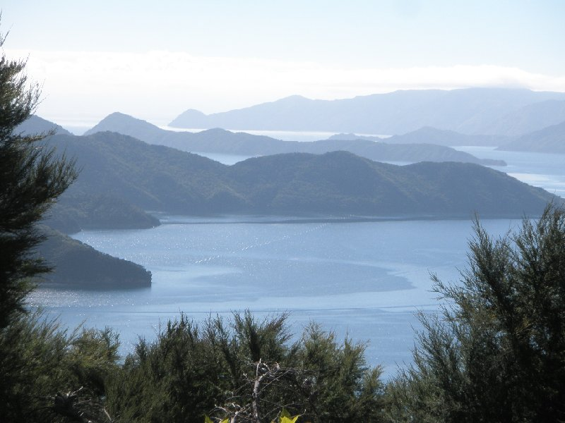 Photo Queen Charlotte Track New Zealand tracks