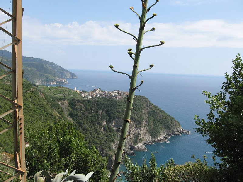 Cinque Terre Italy Diary Information