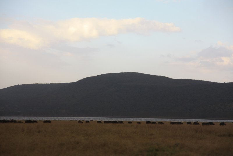 Kenya Tours and Safaris Tsavo Trip Photo