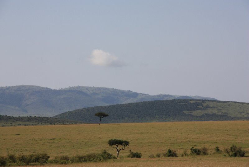 Kenya Tours and Safaris Tsavo Blog