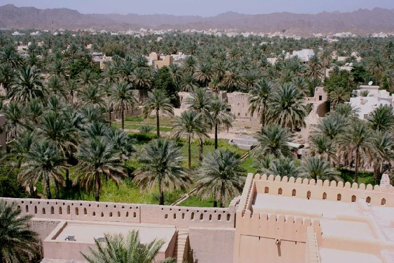 Nizwa Oman Holiday