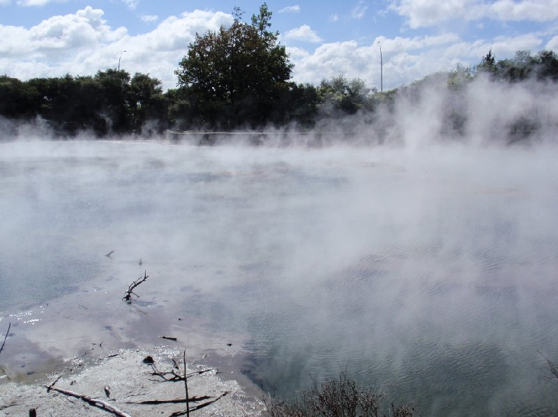 Photo Day Trip to Rotorua from Auckland