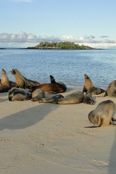 Galapagos Islands Ecuador Travel Review