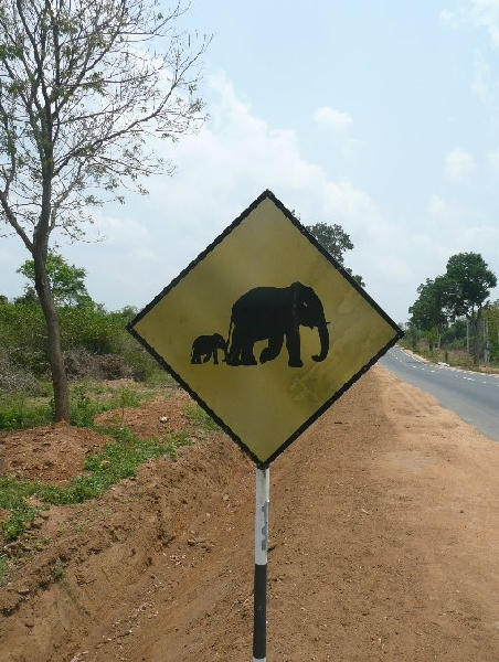 Anuradhapura Sri Lanka Album