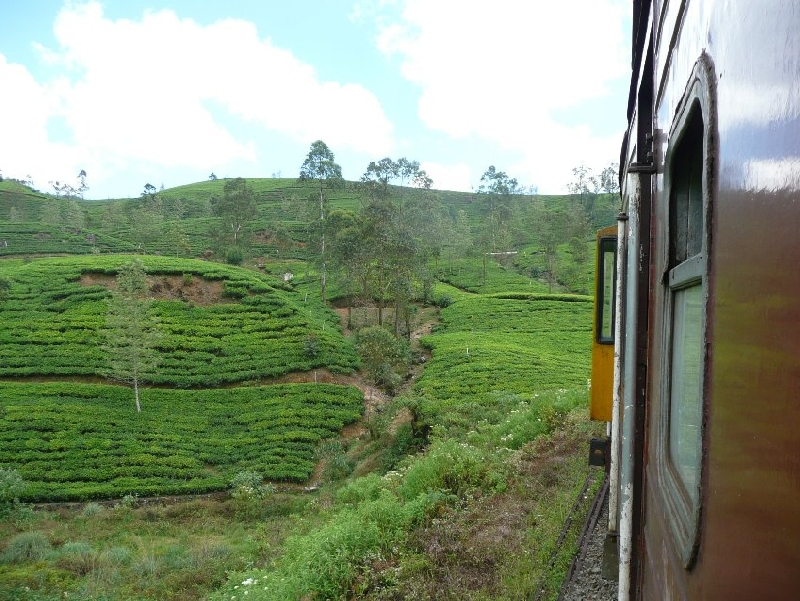 Nuwara Eliya Sri Lanka Stay Travel Diary