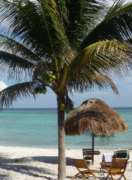 Beach Holiday in Playa del Carmen Mexico Photo Gallery
