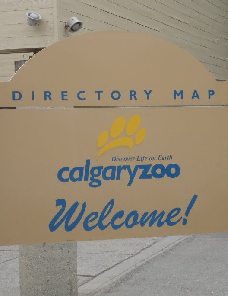 Holiday Trip to Calgary Zoo Canada Review Picture