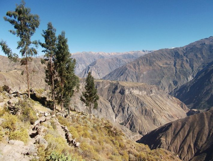 Colca Canyon Peru Travel Photo