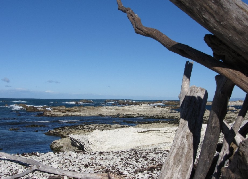 Touring from Kaikoura in Camper New Zealand Album Photographs