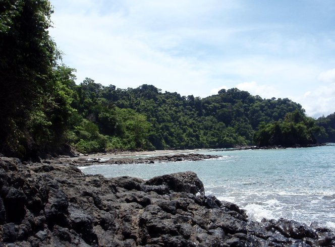 Manuel Antonio National Park and Beaches Quepos Costa Rica Review