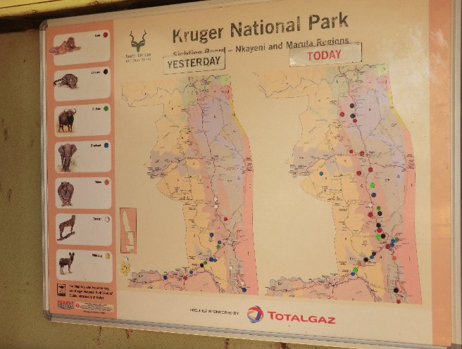 Kruger National Park South Africa Travel Blog