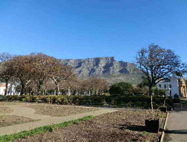 Cape Town South Africa Review Photograph
