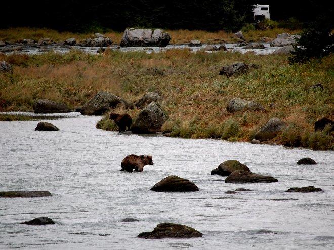 Photo Whitehorse Canada Yukon Camping Trip