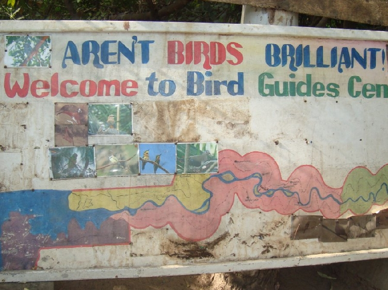 Bijilo Gambia Trip Photo