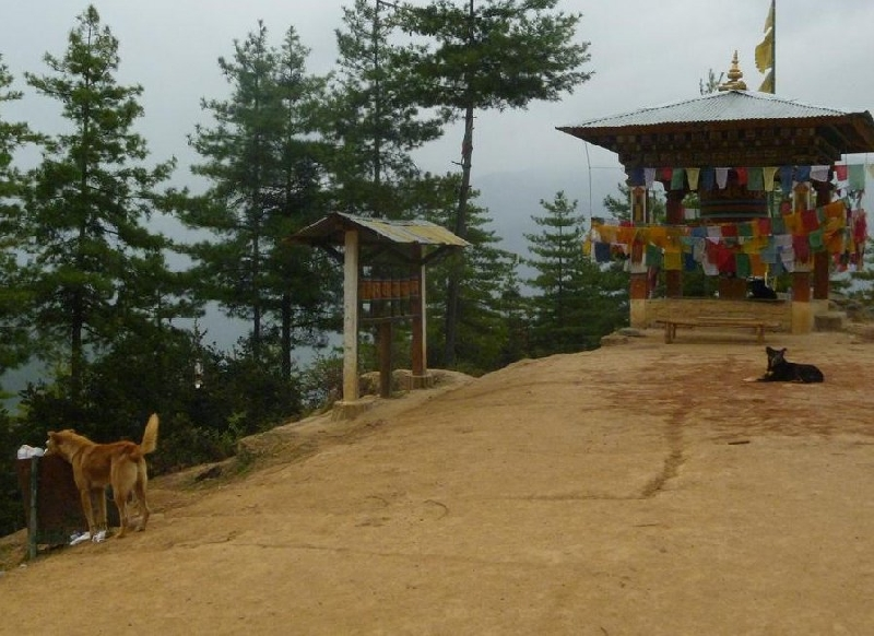 Thimphu Bhutan Holiday Adventure Blog