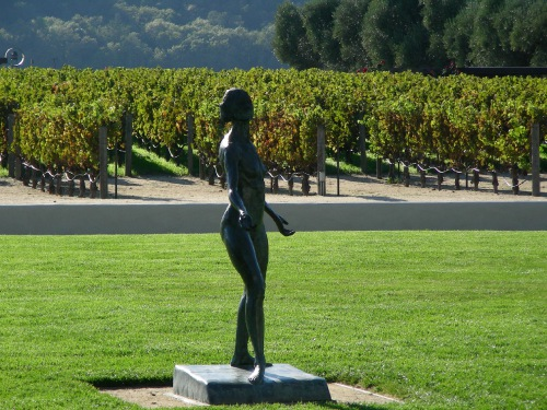 Robert Mondavi Vineyards San Francisco United States Photo
