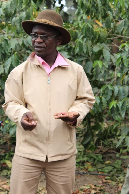 Coffee Plantation Tour guide Arusha, Tanzania