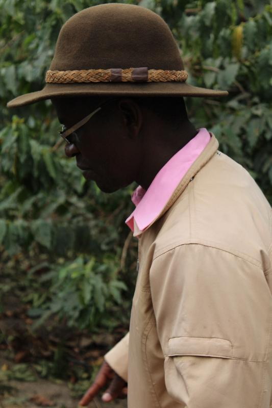 Guided Coffee Plantation Tour in Arusha Tanzania, Arusha Tanzania